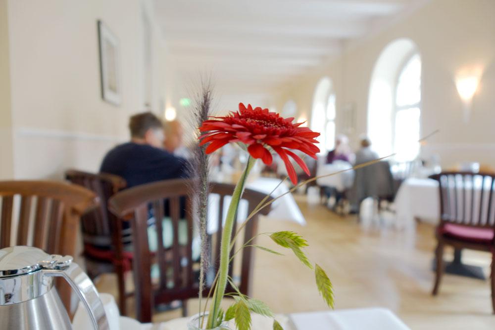 klosterhotel-woeltingerode-fruehstueck2